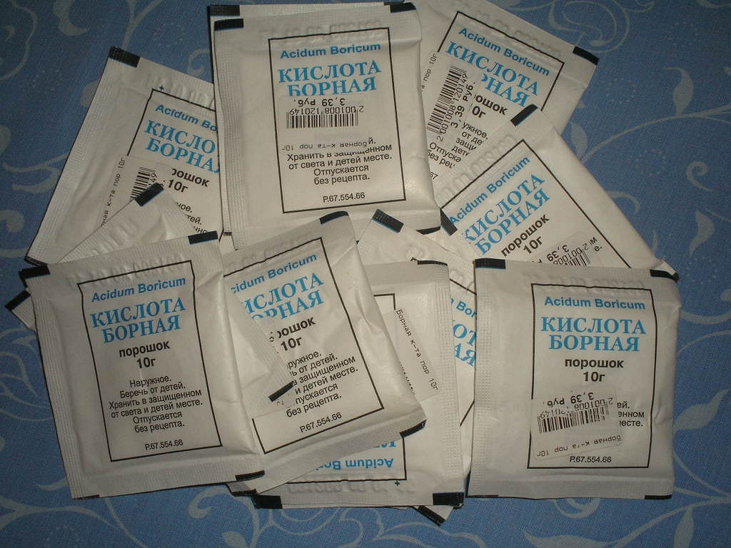 Борная кислота от тараканов: как ее использовать?