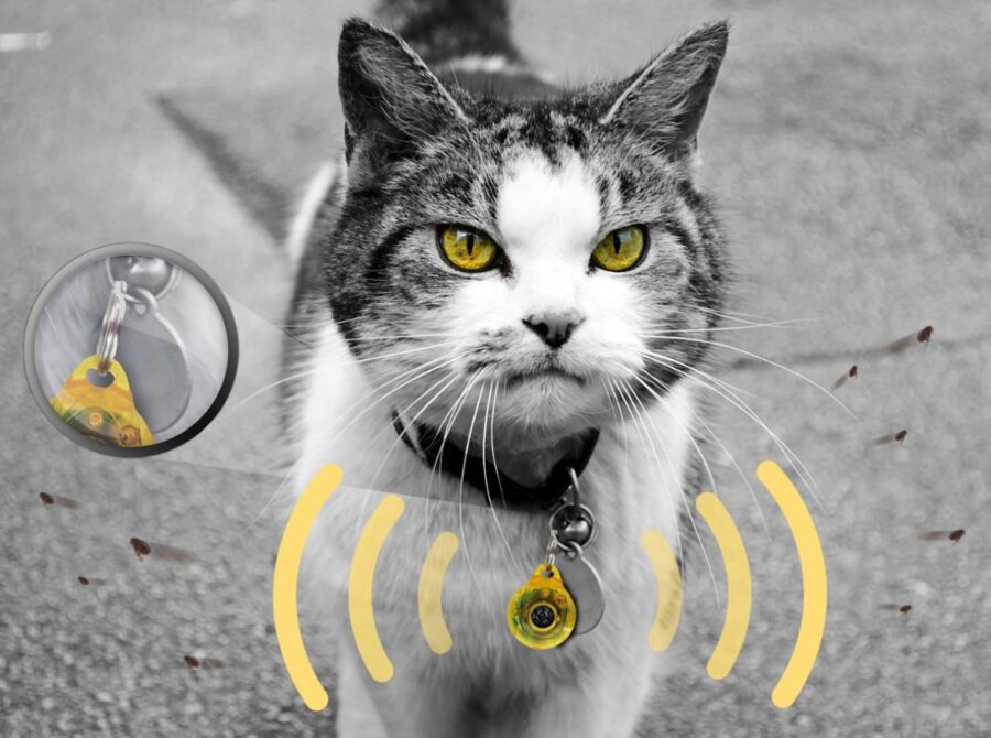 Ультразвуковой отпугиватель клещей и блох Skudo Pet Cat